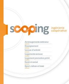 Scoping_IAU